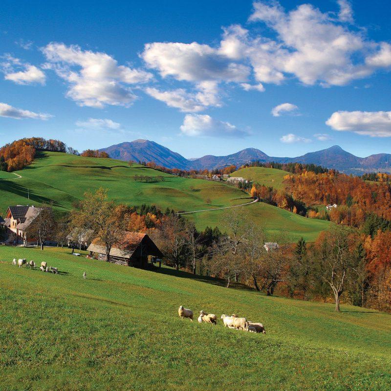 Kmetijstvo na Škofjeloškem v prihodnjih 10-ih letih – povabilo k reševanju anketnega vprašalnika