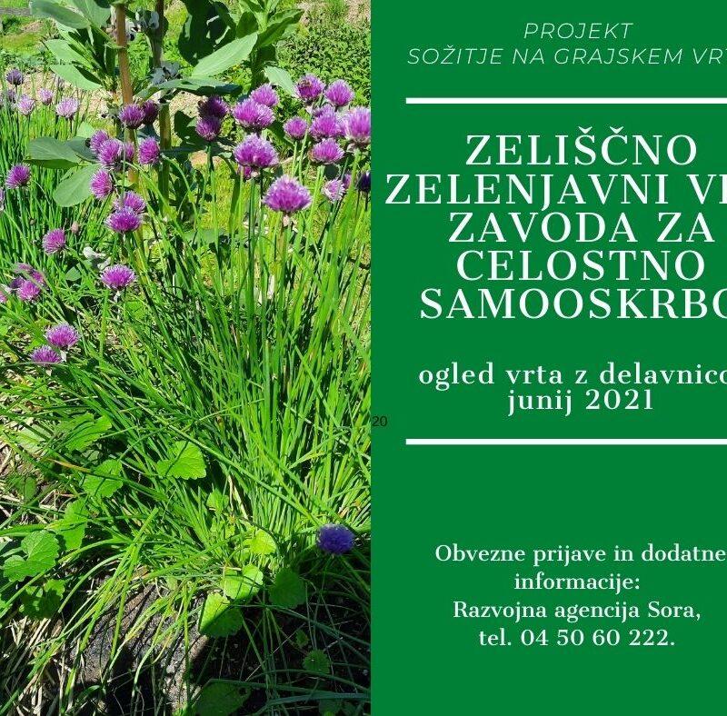 Zeliščno zelenjavni vrt Zavoda za celostno samooskrbo – ogled vrta z delavnico