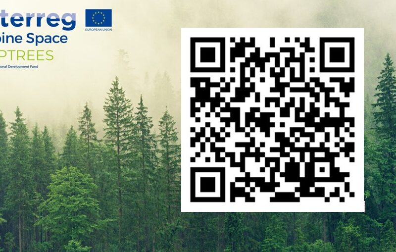 ALPTREES – Strategija za upravljanje tujerodnih drevesnih vrst
